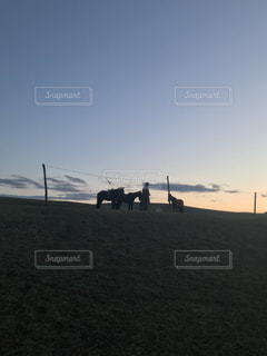 馬達の休息の写真・画像素材[1350225]
