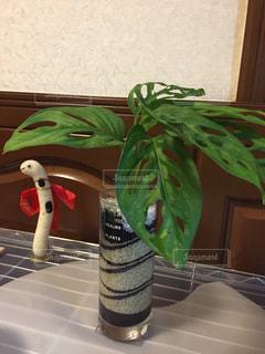 テーブルの上に座って花瓶の写真・画像素材[1408797]