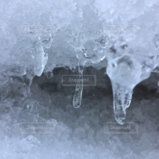 雪に覆われた野原の接写の写真・画像素材[2138438]