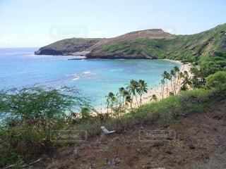 ハワイの海の写真・画像素材[1380314]