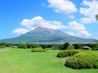 背景の山に大規模なグリーン フィールドの写真・画像素材[1380337]