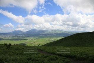 背景に山のある大きな緑の畑の写真・画像素材[3524819]