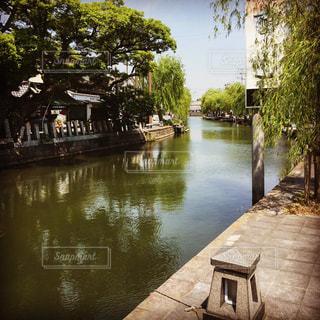 木々 に囲まれた水の体の横にあるベンチの写真・画像素材[1357155]