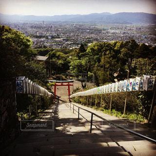 神社から街を一望の写真・画像素材[1359690]