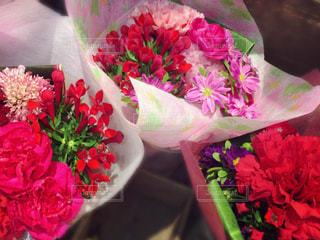 花の写真・画像素材[477720]