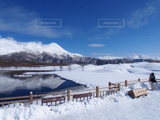 知床の雪原の写真・画像素材[1360944]