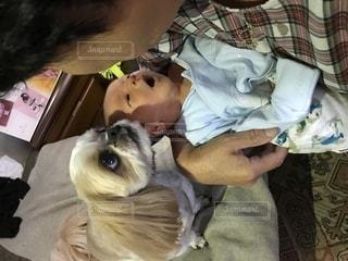 赤ちゃんと犬の写真・画像素材[1398074]