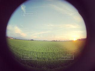 近くに夕日のアップの写真・画像素材[1381326]