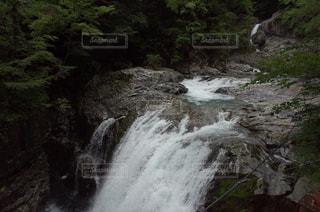 森の中の滝 奈良 みたらい渓谷の写真・画像素材[1364350]