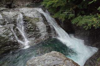 御手洗渓谷の滝の写真・画像素材[1409859]
