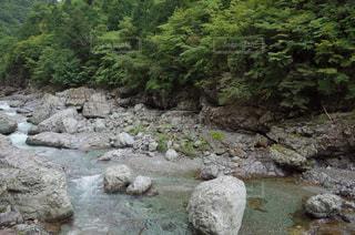 御手洗渓谷の川の様子の写真・画像素材[1409860]
