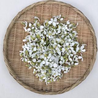 ザルいっぱいのドクダミの花の写真・画像素材[3201695]