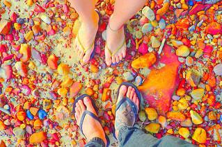これから共に歩む足の写真・画像素材[1353452]