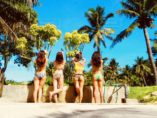 ヤシの木とビーチの人々 のグループの写真・画像素材[1353560]