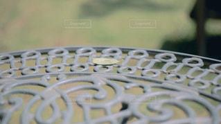 近くに鳥のアップの写真・画像素材[1620107]