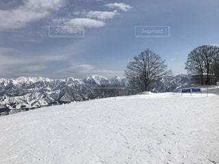 雪に覆われた斜面の写真・画像素材[1353317]