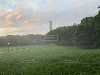早朝の公園の写真・画像素材[3493669]