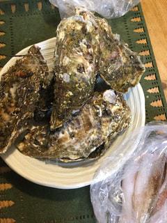 テーブルの上に殻付き牡蠣の写真・画像素材[1359400]