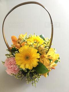ハッピーになる花の写真・画像素材[1360618]