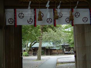山内神社の写真・画像素材[1644110]