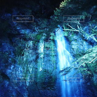 背景の木と滝の写真・画像素材[1696175]