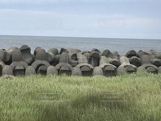 北海道の海岸線の写真・画像素材[1355972]