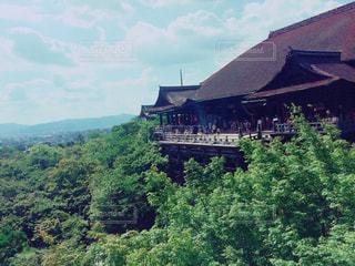 清水寺の写真・画像素材[1365400]
