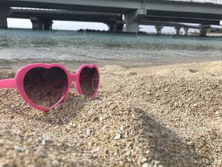 クラゲがすごいので砂浜で。の写真・画像素材[1424634]