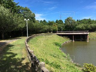 新潟県糸魚川市美山公園(勾玉の池)の写真・画像素材[1357686]