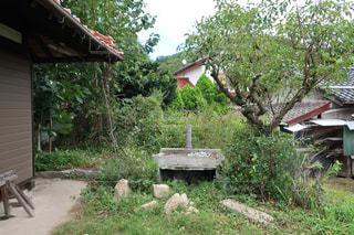 田舎の庭の外水道の写真・画像素材[2484740]
