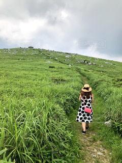 緑豊かな緑のフィールドに立っている人の写真・画像素材[1364152]
