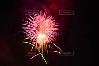 花火の写真・画像素材[1361069]