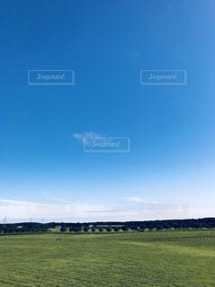 背景の木と大規模なグリーン フィールドの写真・画像素材[1361103]