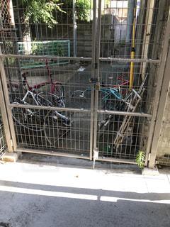 不法投棄された自転車の写真・画像素材[1362753]