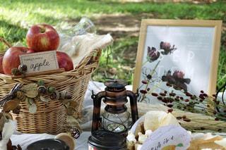 秋のピクニックの写真・画像素材[2442350]