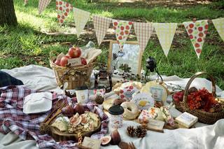 秋のフルーツピクニックの写真・画像素材[2442358]