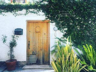 メキシコの家の写真・画像素材[1366776]
