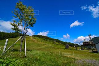 湯の丸高原からの景観の写真・画像素材[1367363]