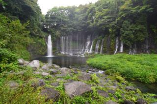 森の中の大きな滝の写真・画像素材[1381564]