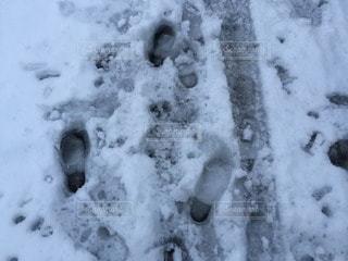 冬の写真・画像素材[69425]