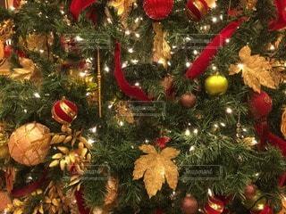 クリスマスの写真・画像素材[70149]