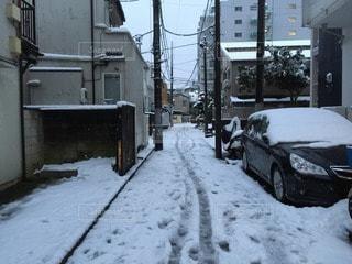 雪の写真・画像素材[73618]