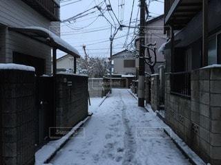 雪の写真・画像素材[73634]