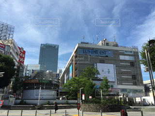 新宿の写真・画像素材[164571]