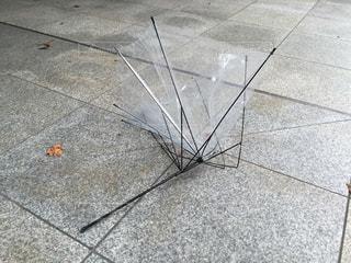 雨の写真・画像素材[169357]