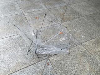 雨の写真・画像素材[169358]
