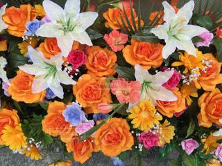 花の写真・画像素材[178330]