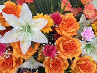 花の写真・画像素材[178333]