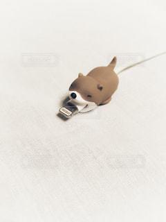 充電器保護カバーの写真・画像素材[1372466]