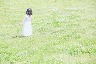 野原で踊る少女の写真・画像素材[1370472]